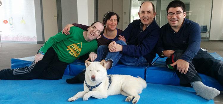 Terapias con animales en personas con discapacidad