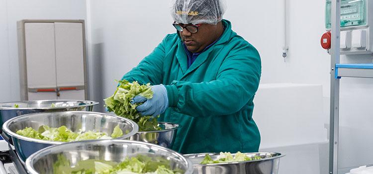 Naia verduras ecologicas